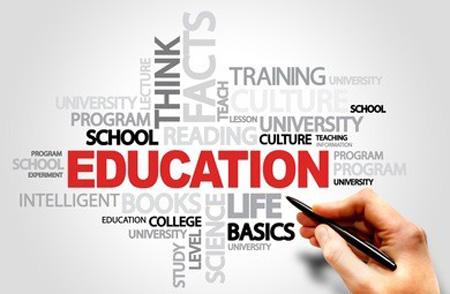 教育机构排名